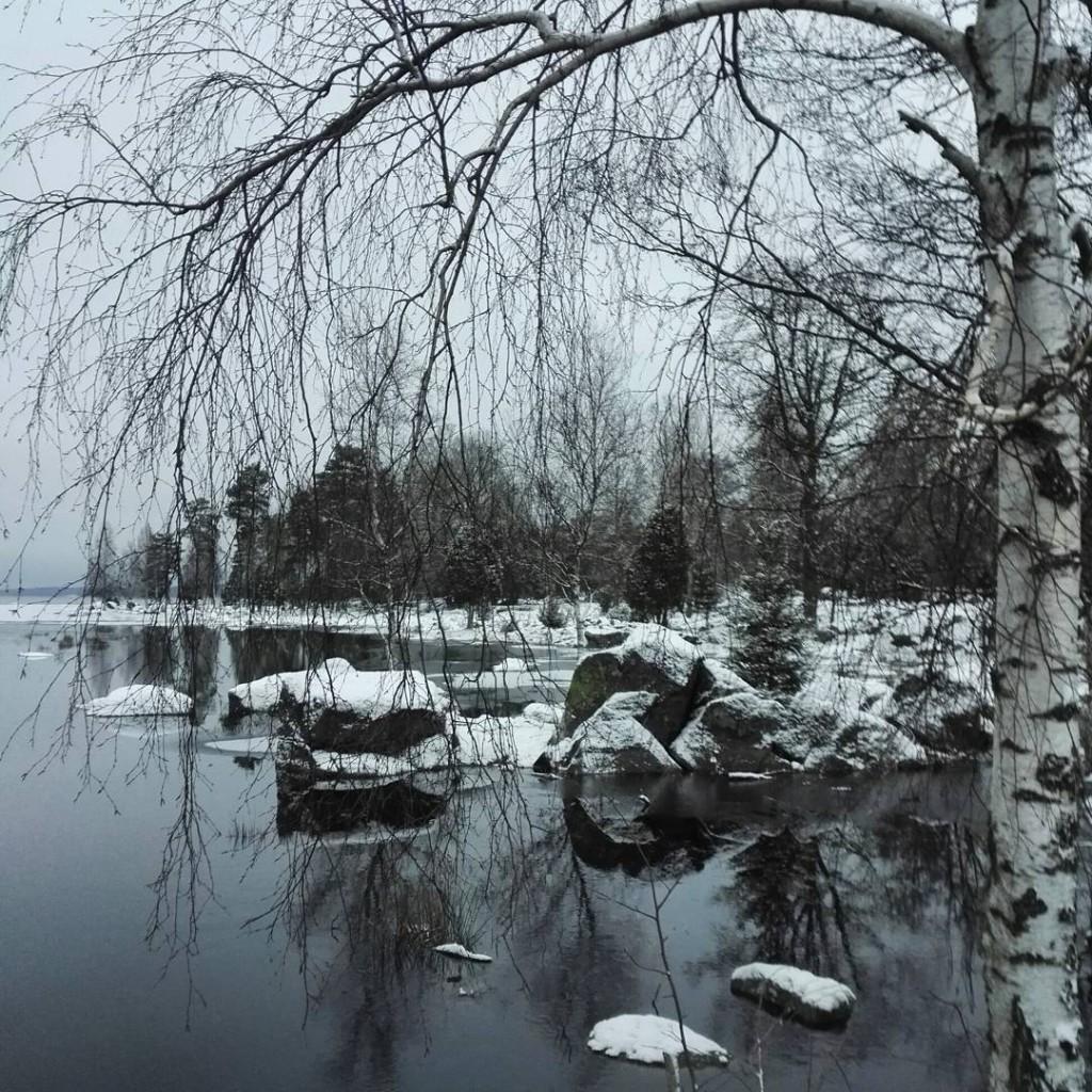 Guleboda | Foto: Madeleine Örkenrud
