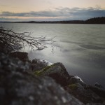 Sjön Viren, Guleboda | Foto: Madeleine Örkenrud